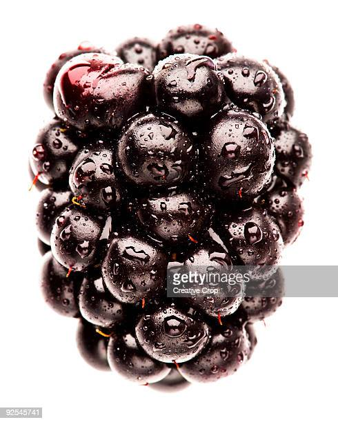 fresh black berry with water droplets - blackberry fruit stock pictures, royalty-free photos & images