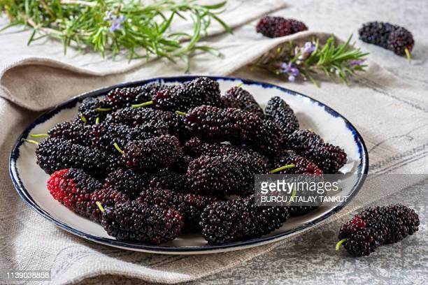 fresh black mulberries - マルベリー ストックフォトと画像