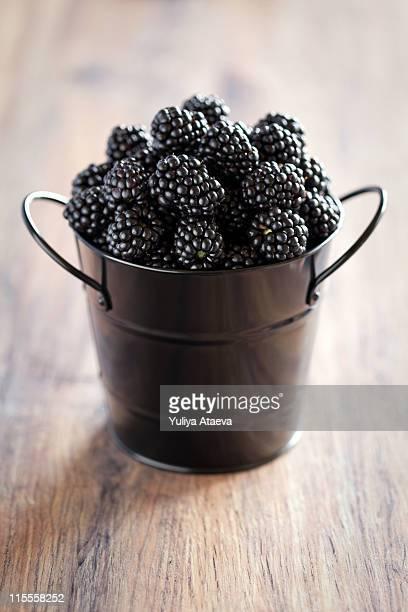 Fresh blackberries in black metal bucket
