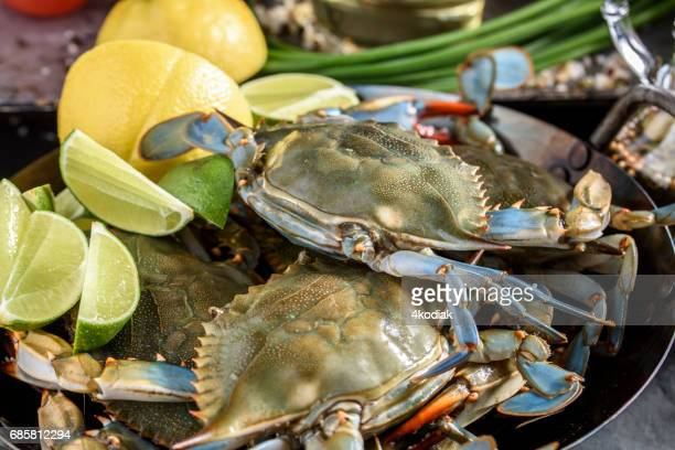 fresh blue crab - blue crab stock photos and pictures