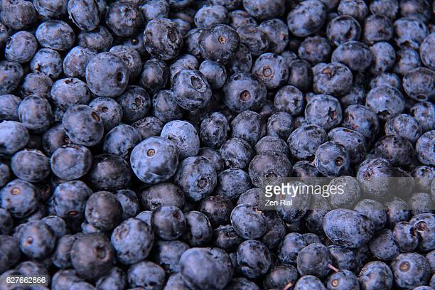 Fresh Blueberries (Vaccinium corymbosum) background