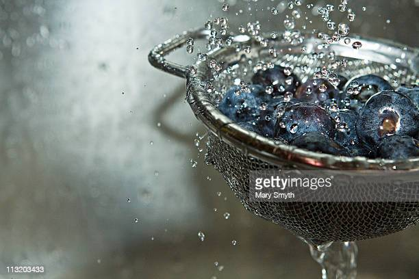 fresh blueberries - colander stock photos and pictures