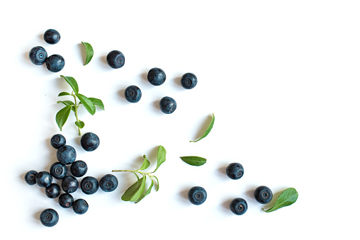 Fresh blueberries with leaves 1013731126