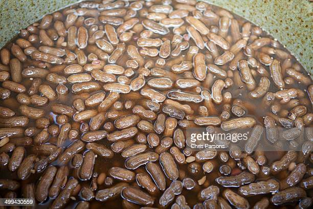 Fresh boiled peanuts in the pot