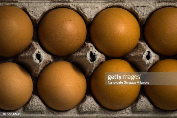 fresh brown eggs - nancybelle villarroya stock photos and pictures