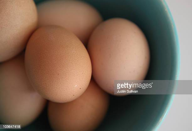 Fresh brown eggs sit in a bowl August 26 2010 in San Rafael California Egg prices have skyrocketed nearly 40 percent since two Iowa egg farms...