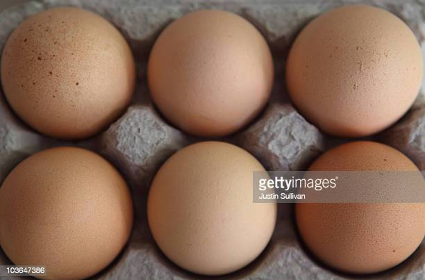 Fresh brown eggs sit in a carton August 26 2010 in San Rafael California Egg prices have skyrocketed nearly 40 percent since two Iowa egg farms...