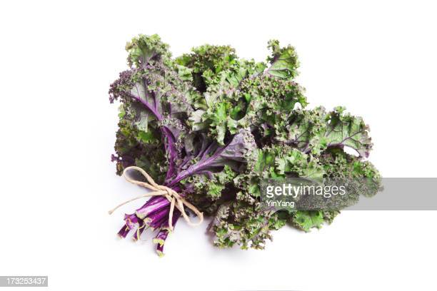Fresh bunch of purple kale tied together