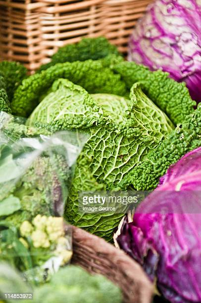 cavolo fresco presso il farmer's market - cavolo cappuccio verde foto e immagini stock