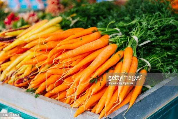 fresh carrot on the market stall at the farmer's market - carrot stock pictures, royalty-free photos & images