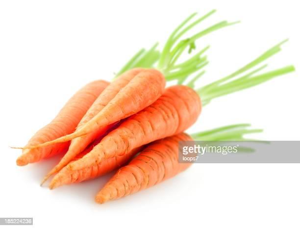 Zanahorias fresca