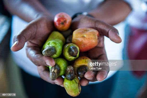 Fresh cashew nuts at the market in Dungun a small fishing town straddling the mouth of the Dungun river on peninsular Malaysia's east coast a...