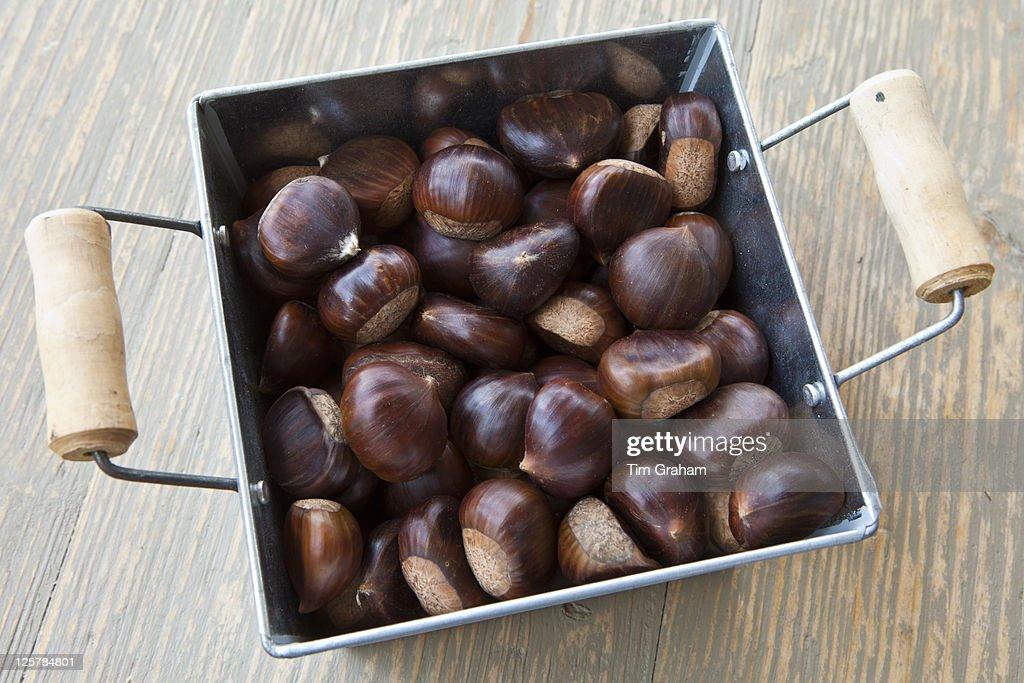 Fresh Chestnuts : Stockfoto