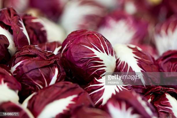 Fresh chicory on marketplace