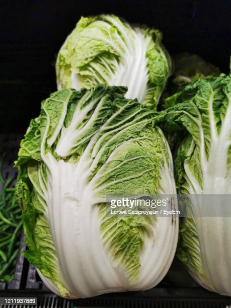 fresh chinese cabbage in market - victoria atkins stock pictures, royalty-free photos & images