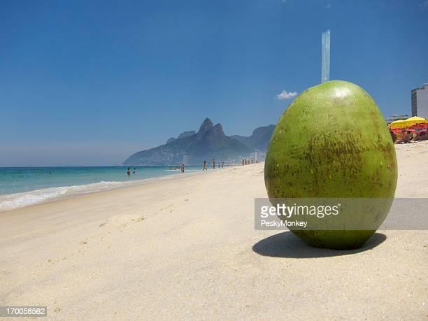 FRAIS Gelado Coco buvant à la noix de Coco Plage d'Ipanema à Rio de Janeiro