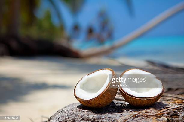 fresh coconut halves on beach - coconut palm tree stock pictures, royalty-free photos & images