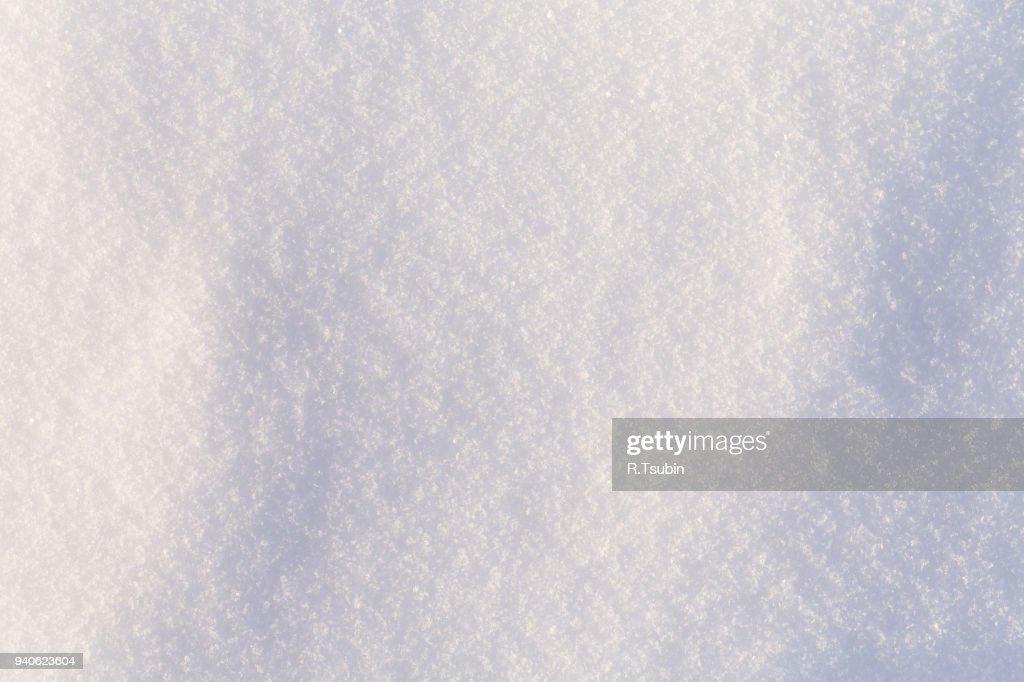Fresh cold white snow : Stock Photo
