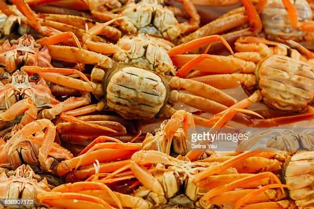 Fresh Crab at Tsukiji Wholesale Fish Market