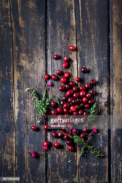 Fresh cranberries and heather on dark wood