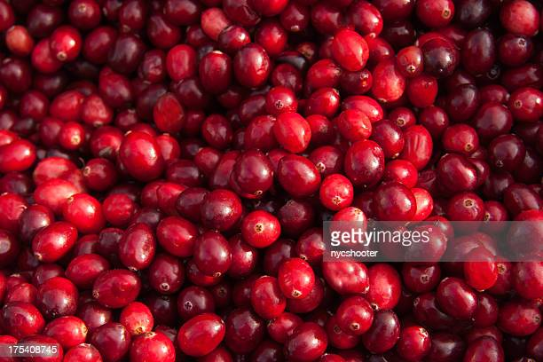 Fresh Cranberry background