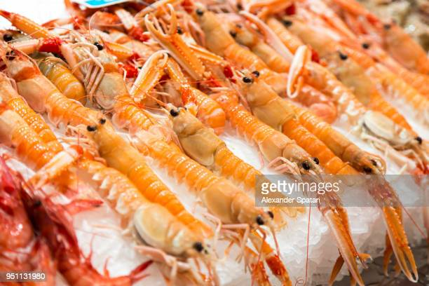 fresh crayfish on ice on a market stall at the farmer's market in valencia, spain - crayfish seafood stock pictures, royalty-free photos & images