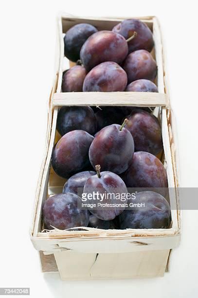 Fresh damsons in a wooden basket