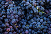 Fresh dark red grapes at market place