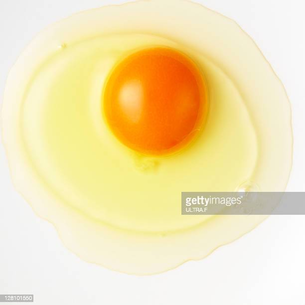 Fresh egg of the cock