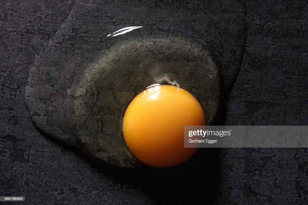 Fresh egg opened : Stock Photo