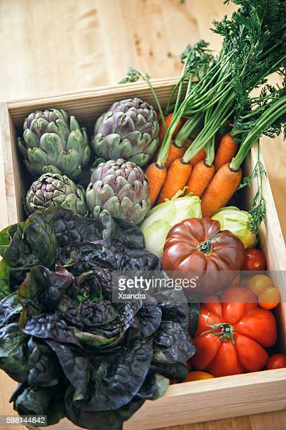 Fresh farm vegetables in a crate