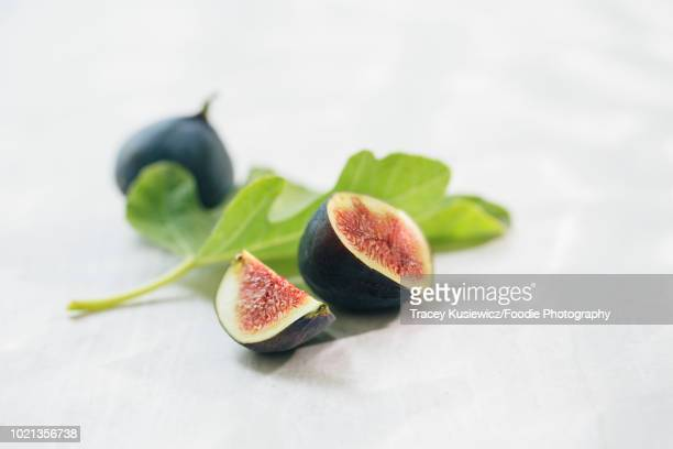 fresh fig still life - fig tree stock pictures, royalty-free photos & images