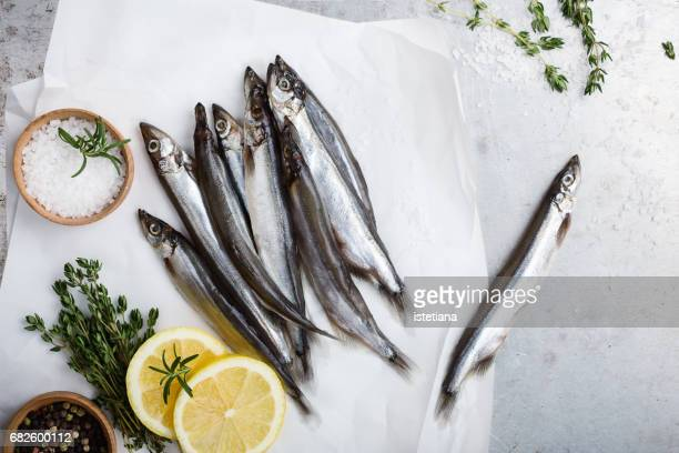 Fresh fish capelin