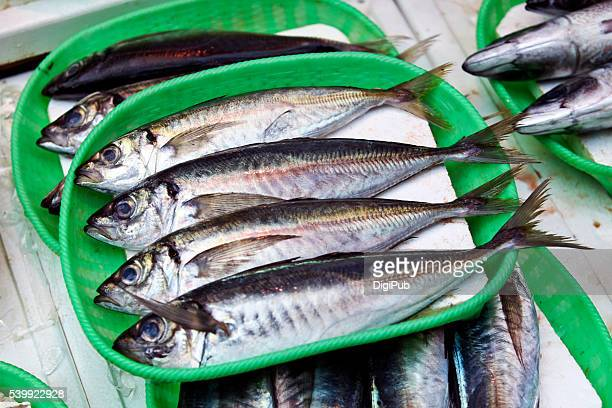 fresh fish displayed for sale - jack fish stock pictures, royalty-free photos & images