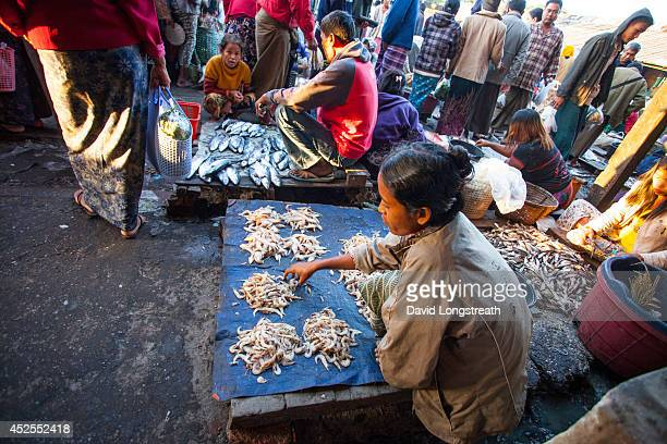 Fresh fish is offered for sale at an early morning market. According to Non Governmental Organizations, Myanmar is one of the poorest countries in...