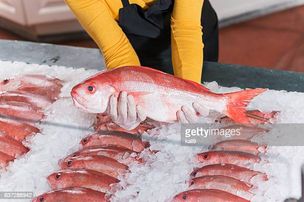 Fresh fish, red snapper, for sale in seafood store