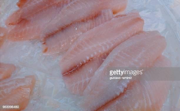 fresh fish steak - dorado fish stock photos and pictures