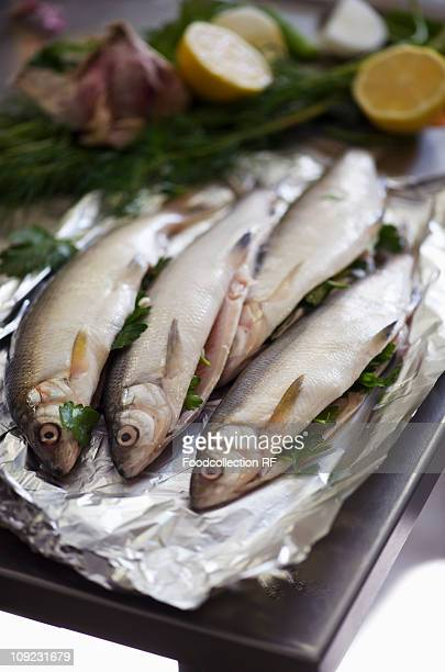 Fresh fish with herb stuffing on foil, close-up
