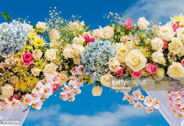 fresh flower wedding arbor against a blue skyarc - 建築上の特徴 アーチ ストックフォトと画像