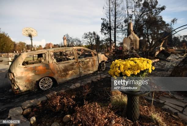 Fresh flowers are seen at a burned residence in the Coffey Park area of Santa Rosa California on October 20 2017 Residents are being allowed to...