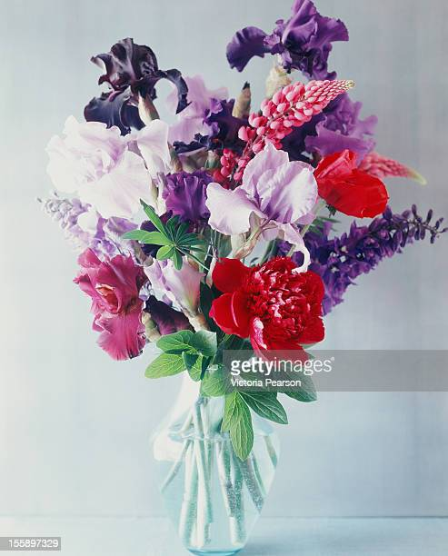 fresh flowers in a vase. - bunch stock pictures, royalty-free photos & images