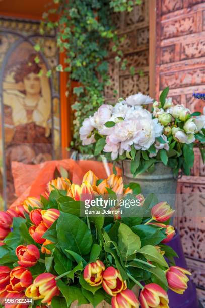 fresh flowers in flower shop, cabourg, normandy, france - calvados stock pictures, royalty-free photos & images