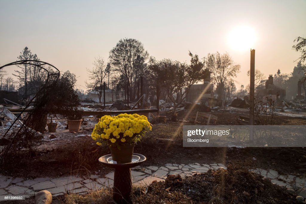 Fresh flowers stand in front of residences burned by wildfires in Santa Rosa, California, U.S., on Friday, Oct. 13, 2017. Wildfires that tore through northern California's iconic wine-growing regions have prompted evacuations of more than 20,000 people, killed 11 and damaged some of the most valuable vineyards and wineries in the U.S. About 1,500 commercial, residential and industrial structures were burned, and damage assessment teams have started accounting for the destruction. Photographer: David Paul Morris/Bloomberg via Getty Images