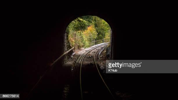 Fresh forest behind the train railway tunnel