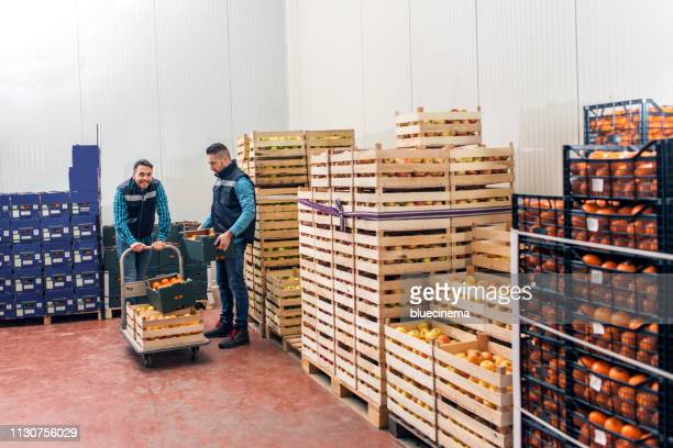fresh fruits and vegetables in warehouse - crate stock pictures, royalty-free photos & images