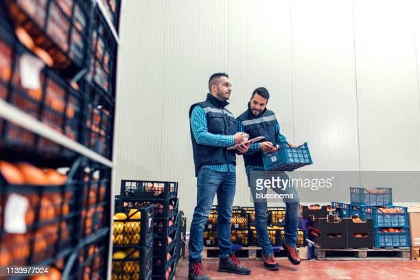 新鮮な果物と野菜の倉庫 - 食料倉庫 ストックフォトと画像