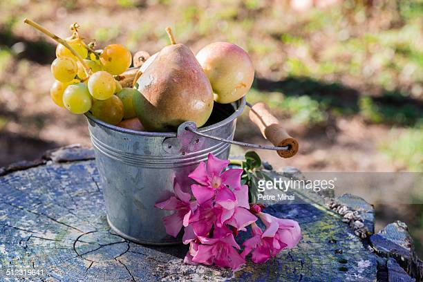 Fresh fruits in a bucket