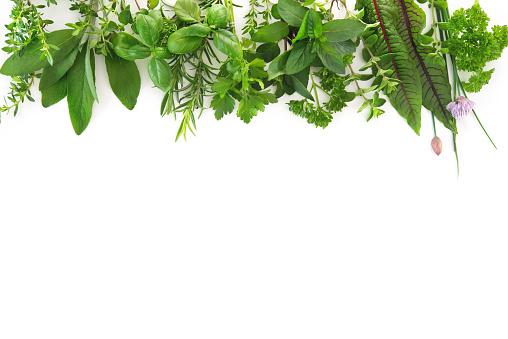 Fresh garden herbs isolated on white background 962862270