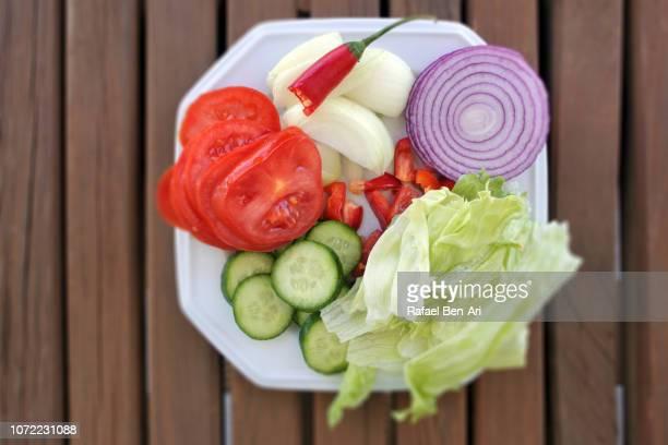 Fresh Garden Vegetables Salad