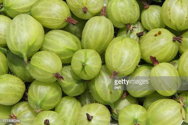fresh gooseberries full frame - pejft stock pictures, royalty-free photos & images